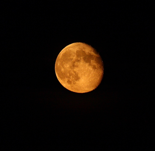An Orange Moon